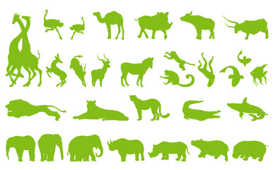 Africa animals illustration collection background vector set