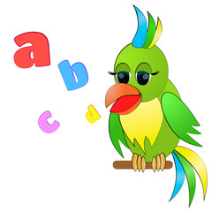 Talking parrot with letters