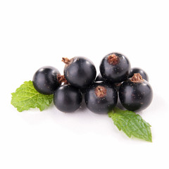 isolated blackcurrant