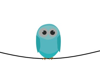 Blue bird on wire