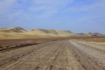 Pista nel deserto