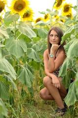 woman in sunflower
