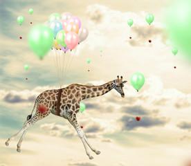Ingenious giraffe reaching an apple flying using balloons