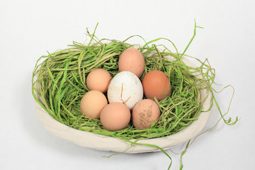 chicken eggs and goose mixed in a basket