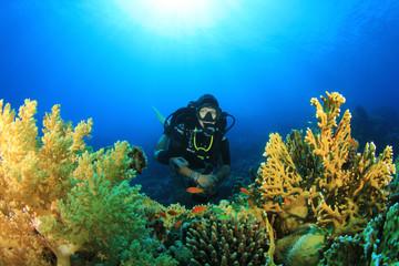 Woman Scuba Diver and Coral