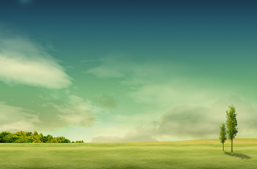 Poster Groen blauw field landscape with trees