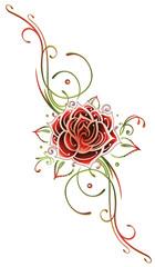 Rose, Ranke, flora, Blume, Blüte, rot, grün
