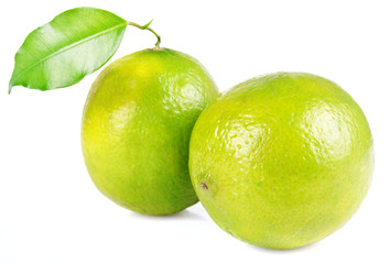 A halved lime on white background