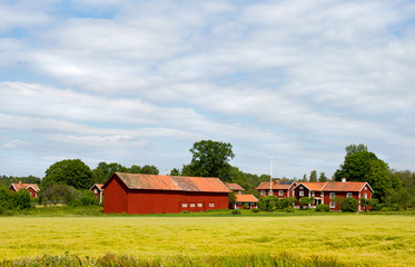 Typical village in Sweden. yellow field.