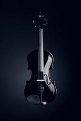 Elegant black violin