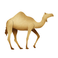 Papercut Camel Recycled Paper