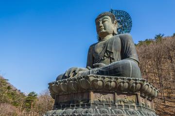 Giant bronze buddha image