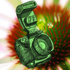 Digital SLR camera sketchs with nice close up flower background