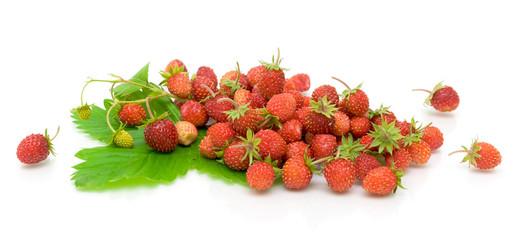 ripe wild strawberry on a white background
