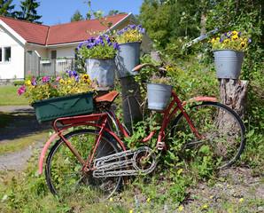Flowerpot decoration in front of house garden