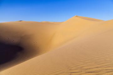sand dune in sunrise in the desert