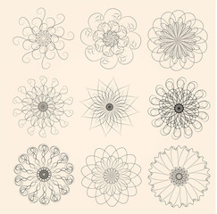 Design elements. Vector set of flowers