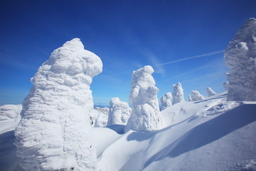 Soft rime, Mt.Zao in Japan