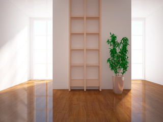 shelves and flower in the room