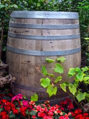 close up of rustic wooden barrel in garden