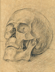 skull, pencil technique