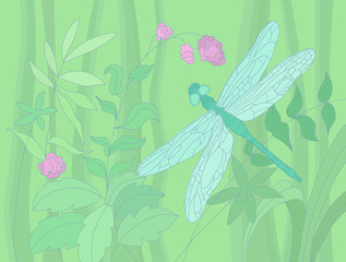 summer illustration with a dragonfly