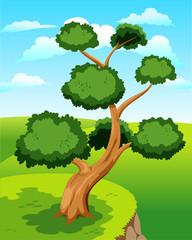 Large tree on green ground