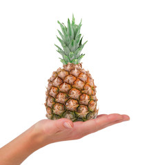 Hand holding pineapple isolated on white