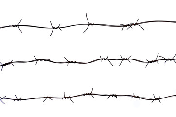 Barbed wires isolated