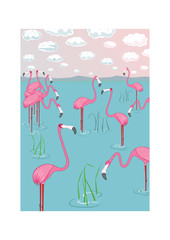 Pink flamingos on the bay. Vector illustration