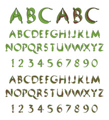 Green alphabet from leaves