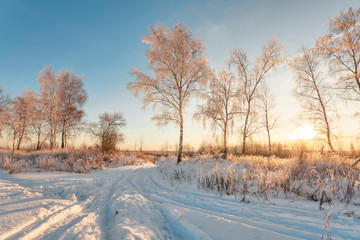 Sunset in winter field