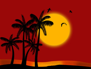 Sunset on tropical paradise with palm's silhouette