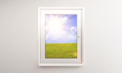 window in field