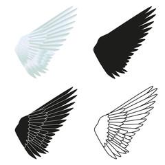 Aile_oiseau_x4