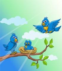 blue bird family in the sunny morning