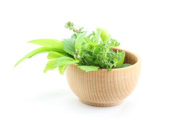 Wall Mural - Fresh herbs in bowl