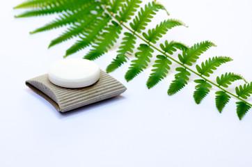 Soap with fresh leaf