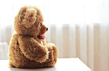 teddy bear profile on white