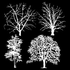 Set of white vector trees on a black background
