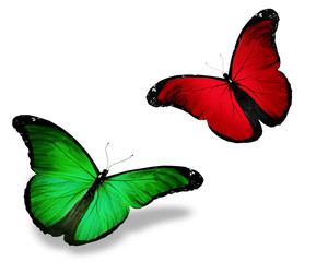 Two red green butterfly, isolated on white