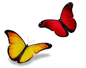 Two red yellow butterfly, isolated on white