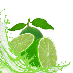Lime with slices and splash isolated on white