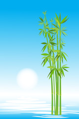Bamboo in the sky, vector image for design