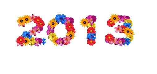 2013 fleurs