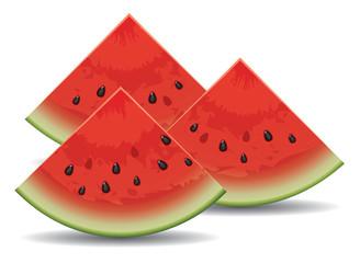 vector watermelon slices