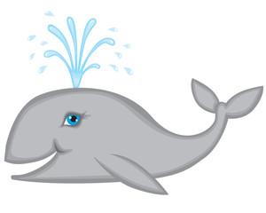 Whale smiles