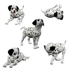 3D Dalmatian Puppies