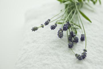 タオルの上に置かれたラベンダーの花