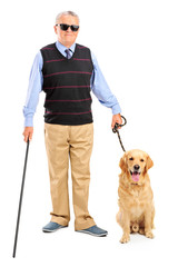 Blind person holding a walking stick and a dog
